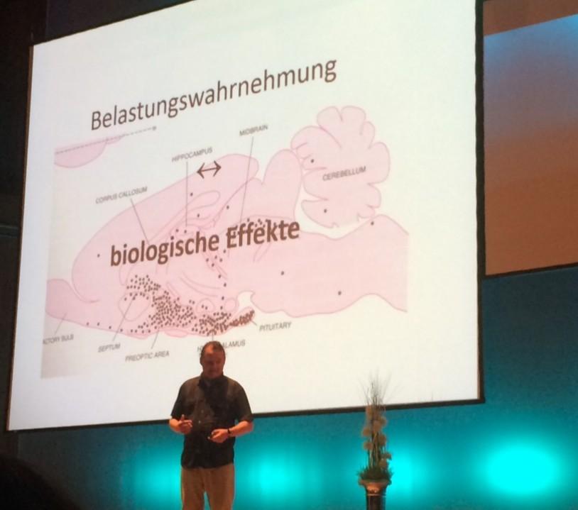 Prof. Dr. Loew im Vortrag