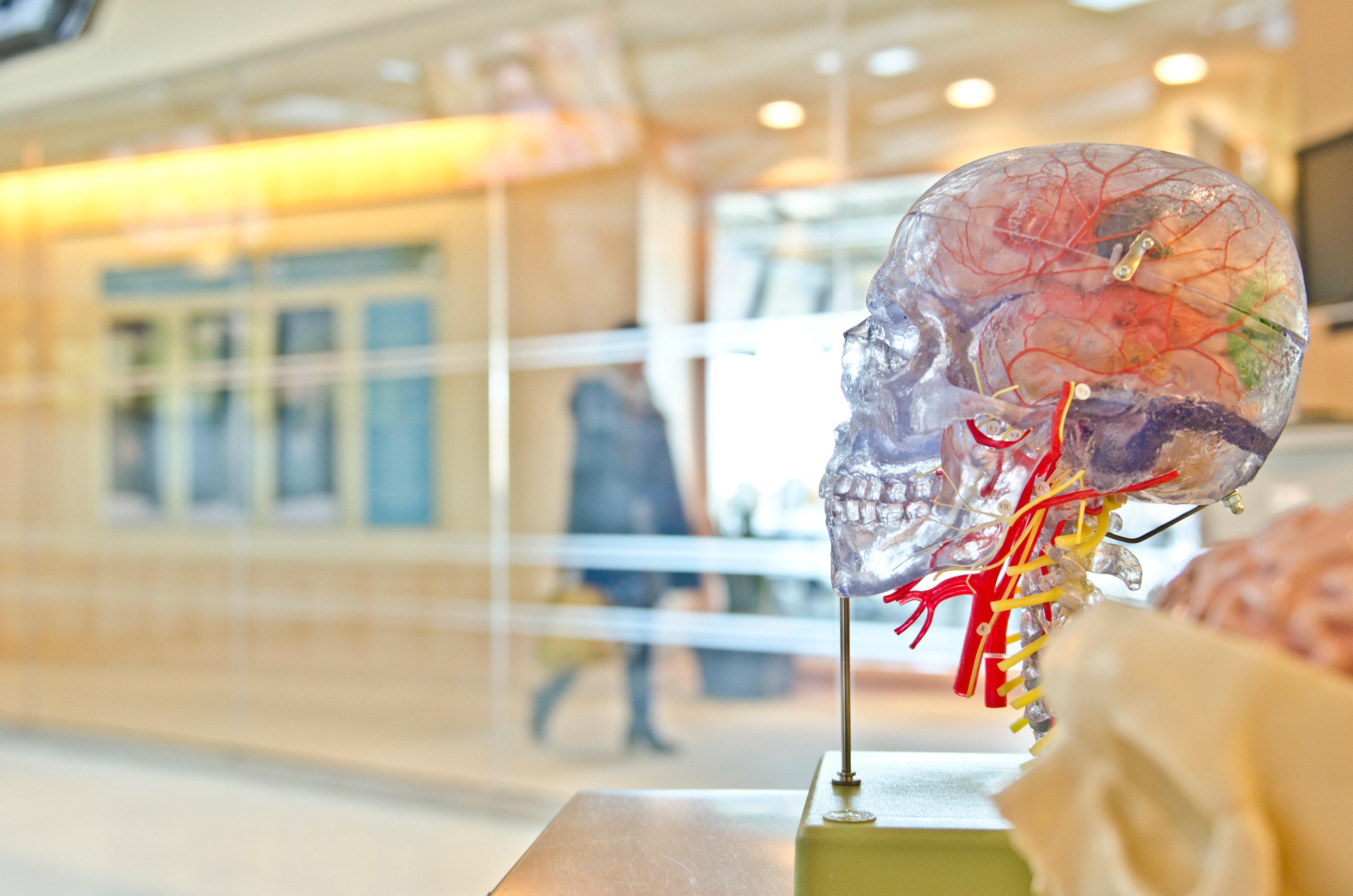 Hochsensibel sein bedeutet: Mein Gehirn arbeitet anders.