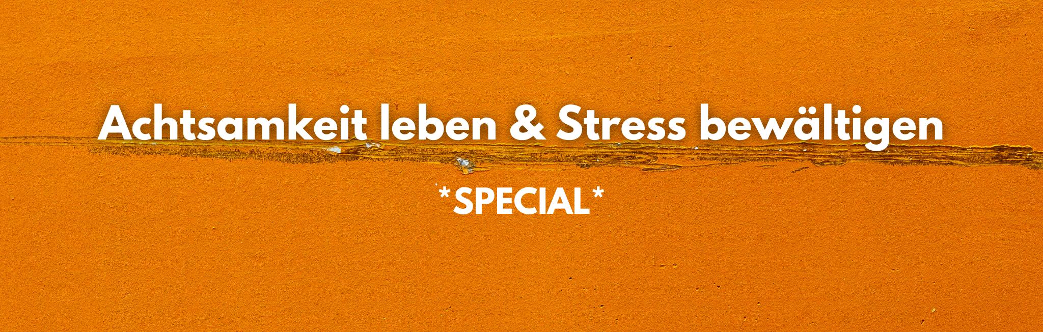 Stress durch Achtsamkeit bewältigen. Ein sanfter Weg für mehr Gelassenheit.