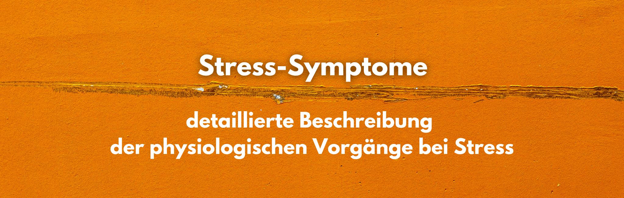 Erfahre hier mehr über die physiologischen Vorgänge bei Stress.